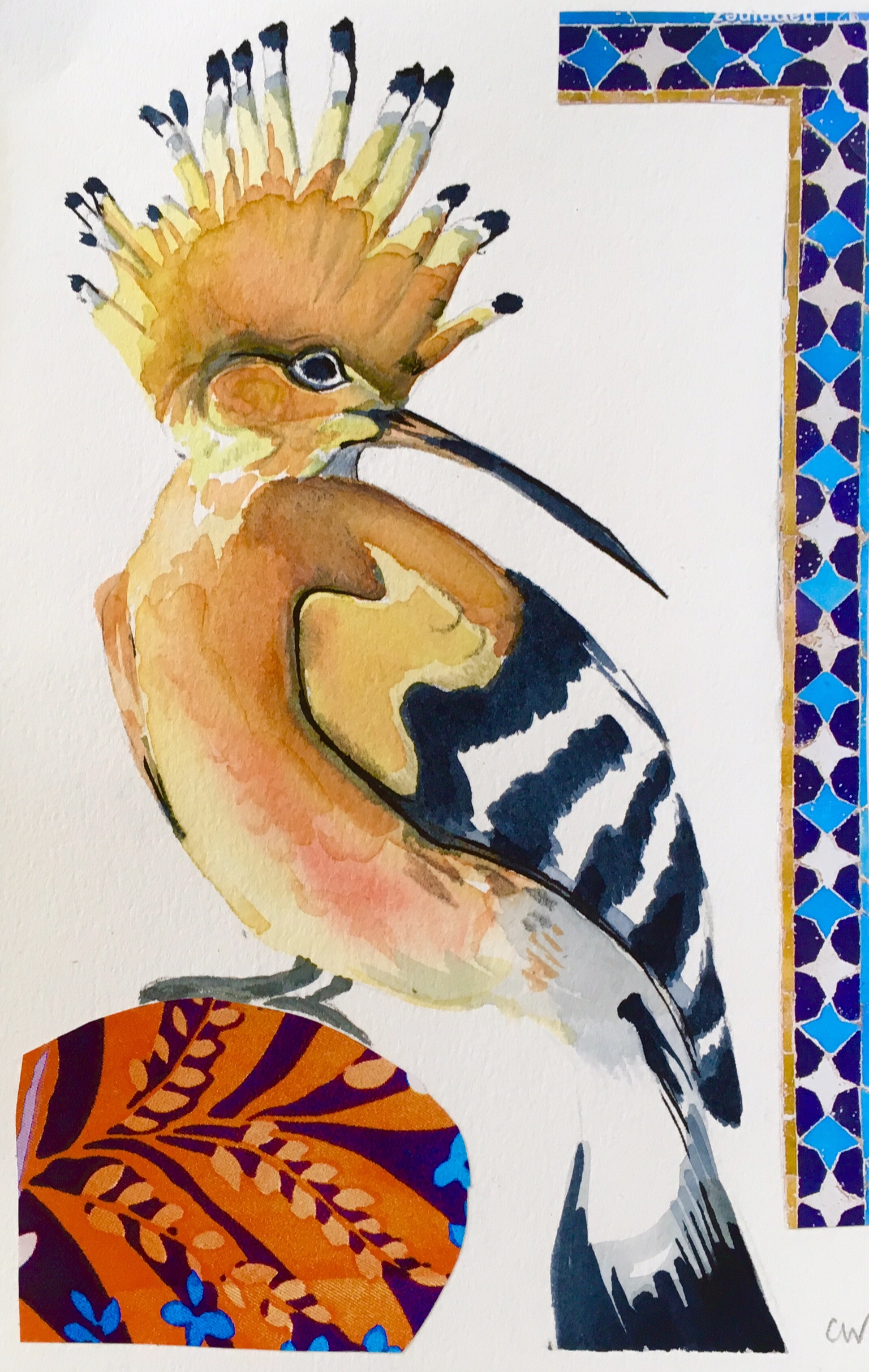 Hoopoe - watercolour