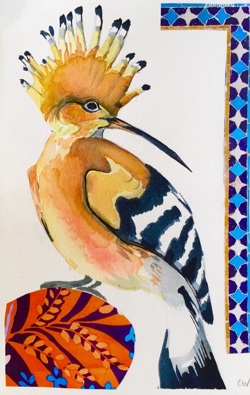 Hoopoe - watercolour